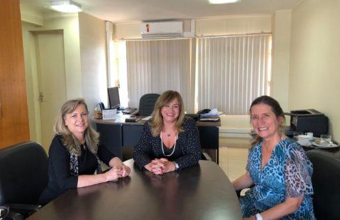 Fundação Anfip e Auditoria Cidadã debatem ações conjuntas no fortalecimento de projetos