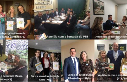 Atividade parlamentar leva o tema da dívida pública e a reforma da previdência aos corredores do Congresso Nacional