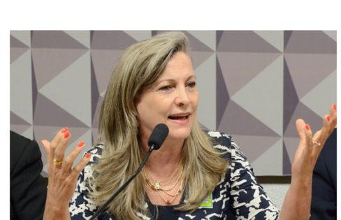 """Brasil de Fato – """"Bancos são responsáveis pela crise"""", diz Maria Lúcia Fattorelli"""