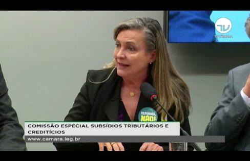 """Palestra: """"Subsídios tributários, financeiros e creditícios"""", M. L. Fattorelli – Audiência Pública da CESUBCRE (Comissão Especial na Câmara dos Deputados) – Brasília/DF"""